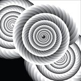 Черно-белые спирали раковины Стоковое фото RF