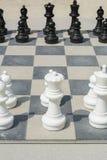Черно-белые chessmen на доске улицы Стоковые Изображения RF