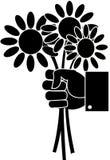 Черно-белый букет цветков маргаритки в руке иллюстрация вектора