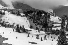 Черно-белый клобук Орегон Timberline и держателя стоковая фотография