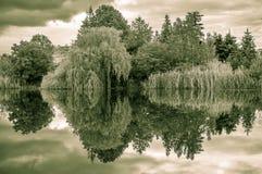 Черно-белый ландшафт с озером 2 стоковое фото rf