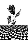 Черно-белый тюльпан Стоковые Фото