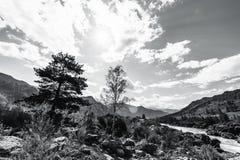 Черно-белый широкоформатный ландшафт в горах Стоковое Изображение RF