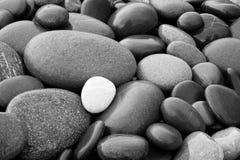 Черно-белая абстрактная ровная круглая влажная предпосылка текстуры моря камешков Стоковое Изображение RF