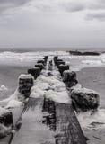 Черно-белая деревянная пристань Стоковое Фото