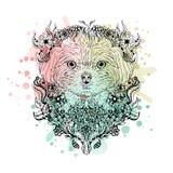 Черно-белая животная голова собаки, абстрактное искусство, татуировка, cketch doodle желтый цвет акварели стародедовской предпосы Стоковые Фотографии RF