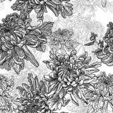 Черно-белая предпосылка с хризантемами Стоковые Фотографии RF