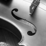 Черно-белая скрипка Стоковое фото RF