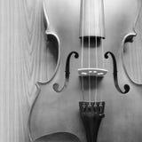 Черно-белая скрипка Стоковые Изображения