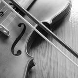 Черно-белая скрипка Стоковое Фото