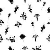 Черно-белая флористическая безшовная картина Стоковые Фотографии RF