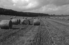 Черно-белое поле с поруками сена Стоковые Фотографии RF