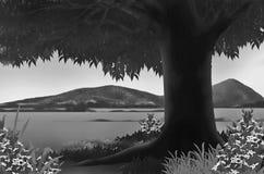 Черно-белое положение Стоковые Изображения RF