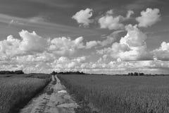 Черно-белое фото проселочной дороги через поля Стоковые Изображения
