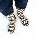 Черно-белые ботинки в свежем снеге Стоковое фото RF