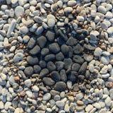Черно-белые камешки Стоковые Изображения