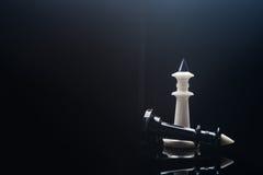 Черно-белые короля шахмат Стоковые Изображения