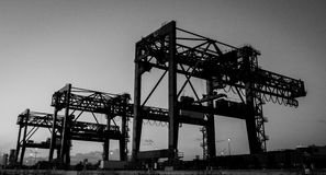 Черно-белые краны стоковое фото rf