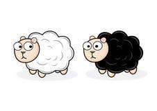 Черно-белые овцы Стоковые Фотографии RF