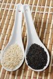 Черно-белые семена сезама стоковая фотография