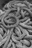 Черно-белые толстые веревочки Стоковые Фотографии RF