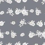 Черно-белые цветки Стоковая Фотография