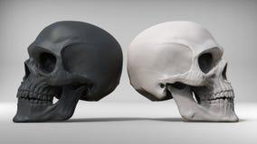 Черно-белые черепа Стоковые Фото