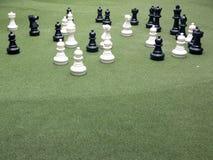 Черно-белые шахматы характера Стоковые Изображения