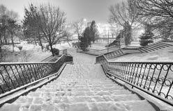 Черно-белый ландшафт зимы Стоковые Изображения RF