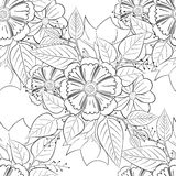 Черно-белый вектор цветочного узора Стоковые Изображения