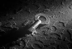 Черно-белый ключ Стоковое Изображение