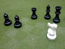 черно-белый мат Стоковое фото RF
