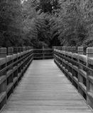 Черно-белый мост Стоковая Фотография
