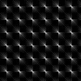 Черно-белый на предпосылке Стоковое Фото