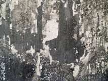 Черно-белый серый фон Стоковая Фотография RF
