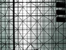 Черно-белый Стоковые Изображения