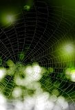 Black-green background with drops of water on a web Стоковые Фотографии RF