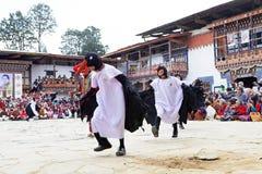 Черно-necked танец на монастыре Gangtey, Gangteng крана, Бутан Стоковое Фото