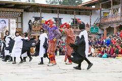 Черно-necked танец на монастыре Gangtey, Gangteng крана, Бутан Стоковые Изображения