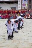 Черно-necked танец на монастыре Gangtey, Gangteng крана, Бутан Стоковое Изображение