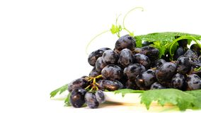 Черные виноградины закручивают вокруг круг акции видеоматериалы