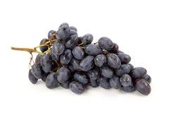 черные виноградины пука Стоковое Изображение RF