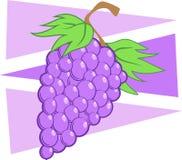 черные виноградины иллюстрация вектора