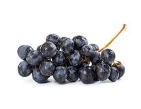 черные виноградины пука Стоковое фото RF
