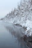 Черные вода и туман на озере с покрытыми снег деревьями Стоковое Изображение RF