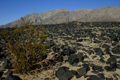 Черные вулканические породы в пустыне Невады, США Стоковое Изображение RF