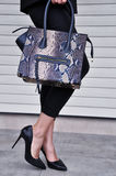 Черные высокие пятки и кожаная сумка Стоковое Изображение RF