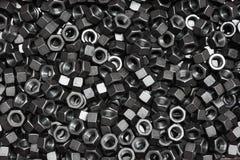 Черные гайки Стоковые Фотографии RF