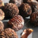 черные грецкие орехи Стоковое Изображение RF