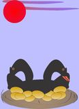 Черные гусыни клали золотые яичка Стоковые Фото